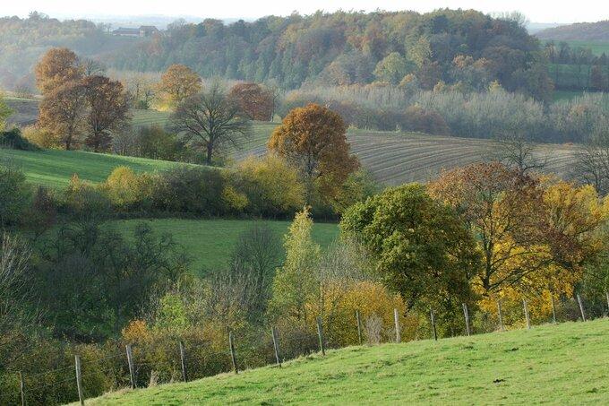 Landschapsprijs voor klimaatbufferplan